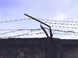 Розыск осужденного к лишению свободы