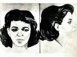 Розыск преступника по портрету